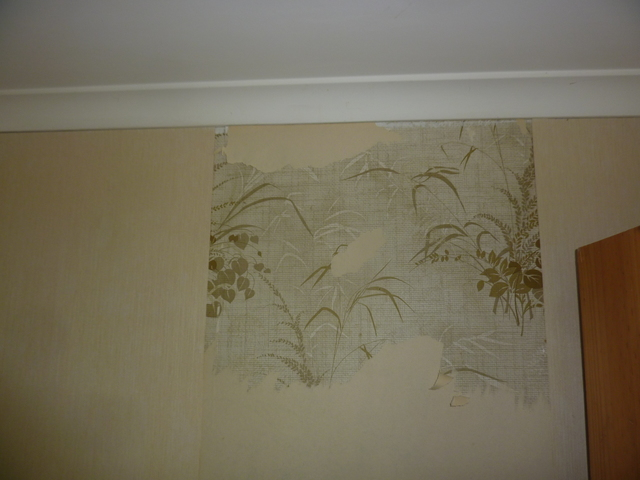 Wall paper layers